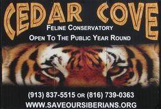 Cedar Cove Feline Conservatory and Sanctuary - Louisburg, Kansas