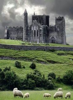 Ireland.  Can't believe I'm going in a few months!!!