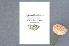Olive Branch Save the Date Petite Cards - Minted - 130