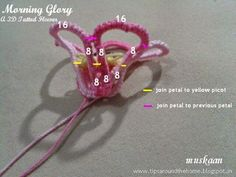 T * Io di muskaan * P * S: Tatting Modello: fiore Morning Glory 3D