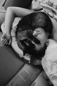 Cat sleeping on owners head Funny Cats, Funny Animals, Cute Animals, Crazy Cat Lady, Crazy Cats, Siamese Cats, Cats And Kittens, I Love Cats, Cool Cats