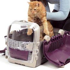 #Viajes de placer para tu #gato. ¿Cómo conseguirlo?  http://blog.wakuplanet.com/como-elegir-un-transportin-para-gato/ #mascotas #gatos
