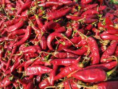 A fűszerpaprika termesztés lépései. Stuffed Peppers, Vegetables, Food, Stuffed Pepper, Essen, Vegetable Recipes, Meals, Yemek, Stuffed Sweet Peppers