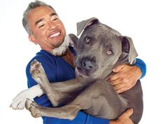 By Cesar Millan  Do you ever wonder what your dog would say if he could talk? Do you ever wonder what's on his mind when he looks up at you with those big, warm, brown eyes?  You might be surprised