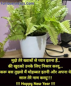 Top 10 Best Happy New Year Shayari in Hindi Best New Year Wishes, New Year Wishes Messages, Happy New Year, Shayari Image, Shayari In Hindi, Love Status, Romantic Love Quotes, Love Images, Dreaming Of You