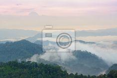 Schöne landschaft schwebenden nebel. - Fototapeten - myloview 171,-