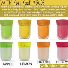 The Right Cup - Faith In Humanity Restored! ~WTF awesome fun facts