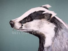 Badger Embroidered Textile Art Canvas by gillianbates on Etsy