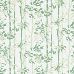 The wallpaper Beechgrove - 214575 from Sanderson is wallpaper with the dimensions m x m. The wallpaper Beechgrove - 214575 belongs to the popular wall