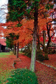Autumn Colors in Japan. Catholic Tajimi Church Shingen Monastery