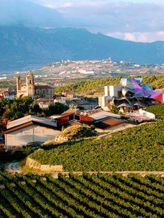 Beautiful vineyard, red wines of Rioja, Spain Pamplona, Villas, Bodegas Muga, Rioja Spain, Red Wines, Balearic Islands, Spain And Portugal, Beautiful Places In The World, Spain Travel