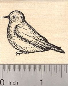 Bluebird Rubber Stamp Blue Bird of Spring Thrush -- You can get more details by clicking on the image.