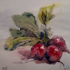 """3 Red Radishes"" original watercolor painting by Julie Hill"