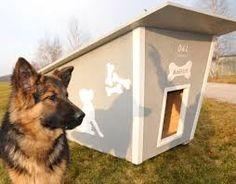 Znalezione obrazy dla zapytania budy dla psa