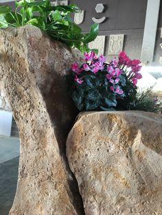 Roca tematizada por Nathan Giffin en la Escuela Internacional de Tematizadores Estecha Master Class, Decor, Rocks, School, Decoration, Decorating, Deco