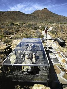 Discover South Africa's Karoo National Park G. Beaufort West, Victoria West, Countries Of The World, Cape Town, South Africa, City Photo, Tourism, Waterfall, National Parks