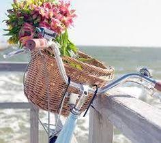 Kết quả hình ảnh cho xe đạp hoa