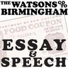 essay questions for the watsons go to birmingham