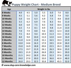 Puppy Weight Chart For Medium Size Breed Dogs Crate Training Dog Treats