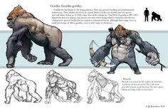 This was from the first week of Creature design, man i was confused. We have to study and a do a realistic drawing of an ape that we chose, and the foll. Creature Concept Art, Creature Design, Animal Sketches, Animal Drawings, Monkey Art, Prehistoric Animals, Weird Creatures, King Kong, Animal Design