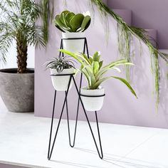West Elm Iris Planter + Chevron Stand, Triple - Home Decor - Planters & Terrariums - Indoor Floral Decor, Indoor Planters, Hanging Planters, West Elm, Planter Stand, Garden Decor, Diy Plant Stand, Diy Planters Indoor, Indoor Plants