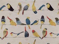 TFA Early Birds Multi