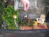 Mini Garden supplies- I'm thinking about making a toad garden with Harry.