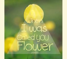 Tulips can hear my shout up love
