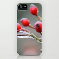 Frozen Berries iPhone & iPod Case by BACK to BASICS - $35.00