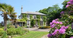 We're excited to share our latest dog friendly gem with you! Perched on the Devon / Cornwall border, The Horn of Plenty Hotel has been one of the area's most-loved addresses for over 50 years. Best of all, they LOVE DOGS! Enjoy a winter getaway with your pup at this gorgeous country house hotel from £159 per room until the end of March - more details here: