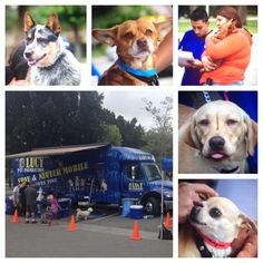Two days in Baldwin Park this week! Today & Tomorrow! If you're in the area, come by to see our mobile vet clinic in use!