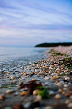 Pebbly shore  #sea #ocean #beach