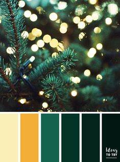 Green color palette inspired by winter