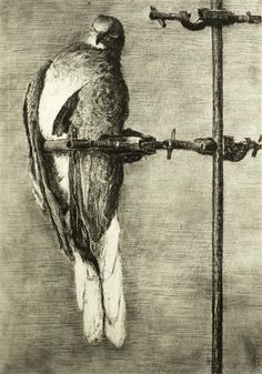 Artwork by William Kentridge, Bird Catcher, Made of archival pigment print