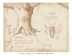 """""""Nemetons & Fireflies"""" from the Teen Wolf Bestiary by Swann Smith. Art prints starting at US$20."""
