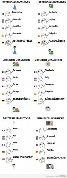Those crazy Germans! hahaha! :D