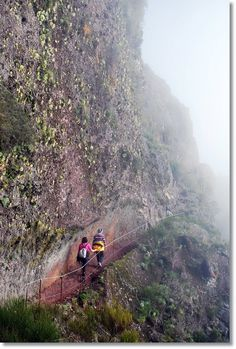 Walking from Pico do Arieiro to Pico Ruivo, Madeira Funchal, Dangerous Roads, Growing Gardens, Misty Forest, Paragliding, Azores, Big Waves, Walkways, Island Life