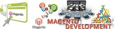 Magento gold partner with certified magento developers - Elsner Technologies is one of USA;leading Magento Ecommerce solution providers.If you want to any more details you can visit our site & Contact us:+1 (607) 524-4040.