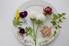 Flower #flower #spring