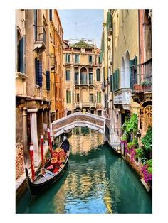 10 Amazing Photos of Venice, the City Blessed with Eternal Love Scenic view of gondola on a canal, Venice, Italy The Places Youll Go, Places To Visit, Places To Travel, Travel Destinations, Time Travel, Travel Tips, Venice Travel Guide, Venice Canals, Belle Villa