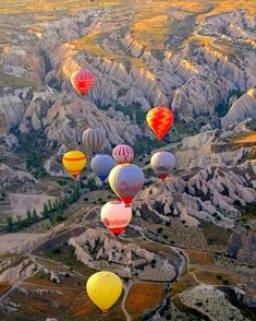 The Albuquerque International Balloon Fiesta is a yearly hot air balloon festival that takes place in New Mexico. This colorful balloon fiesta has become the largest balloon festival in the world! #PhotosNotPasswords