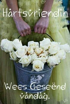 buckets of white roses. Would be cute for country/rustic wedding to have the flower girl pull petals out of this. Love Rose, My Flower, Beautiful Flowers, Pretty Roses, Flower Girls, Beautiful Things, Le Diner, Flower Quotes, White Roses