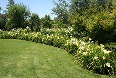 Cercos, una parte clave del jardín