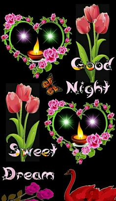 Beautiful Good Night Images, Romantic Good Night, Cute Good Night, Good Night Gif, Sweet Night, Good Night Sweet Dreams, Beautiful Gif, Beautiful Flowers, Good Night Thoughts