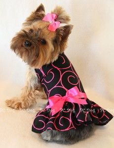 Hot Pink Swirls Dog Dress :) beautiful! I have this for my yorkie but its to big at the moment.