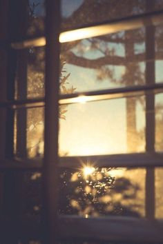 54 New ideas for photography nature light sunlight Beautiful Mind, Beautiful Pictures, Life Is Beautiful Quotes, Window View, Foto Art, Through The Window, Morning Light, Gd Morning, Morning People