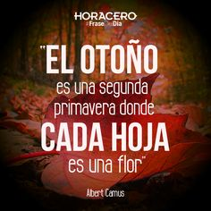 """""""El otoño es una segunda primavera donde cada hoja es una flor"""" Albert Camus #Frases #FraseDelDía"""