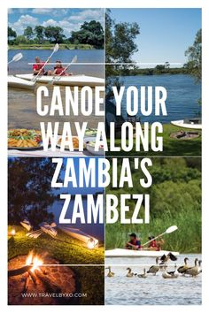 Canoeing down the Zambezi River, game viewing and camping as we go; this is a truly unique and exhilarating way to experience this part of Southern Africa. Canoeing, Kayaking, Human Settlement, Down The River, Victoria Falls, Before Sunset, Short Trip, Bird Species, Rafting