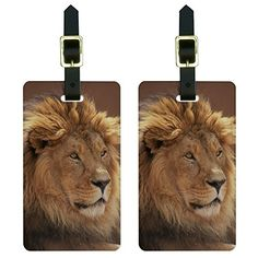 Male Lion  African Plains Luggage Tags Suitcase CarryOn ID Set of 2 >>> Click image to review more details.Note:It is affiliate link to Amazon.