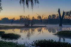 Frozen morning by Natty Gur on 500px